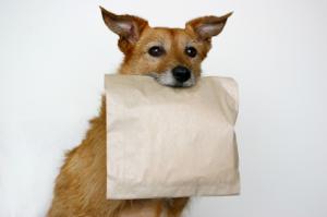 doggie-bag-resized-600