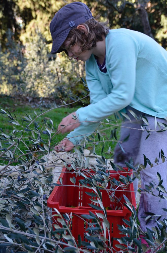 Picking by hand